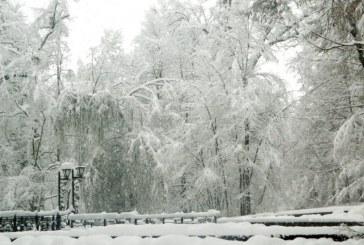 Meteo: Maine va ninge, iar temperatura minima, in Maramures, va fi de -8 grade C