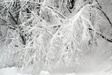 ANM a prelungit Codul galben de precipitatii mixte, polei si ceata pentru Transilvania si Dobrogea