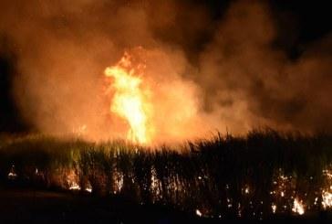 Incendiile fac ravagii in nordul Australiei. Un barbat si-a pierdut viata
