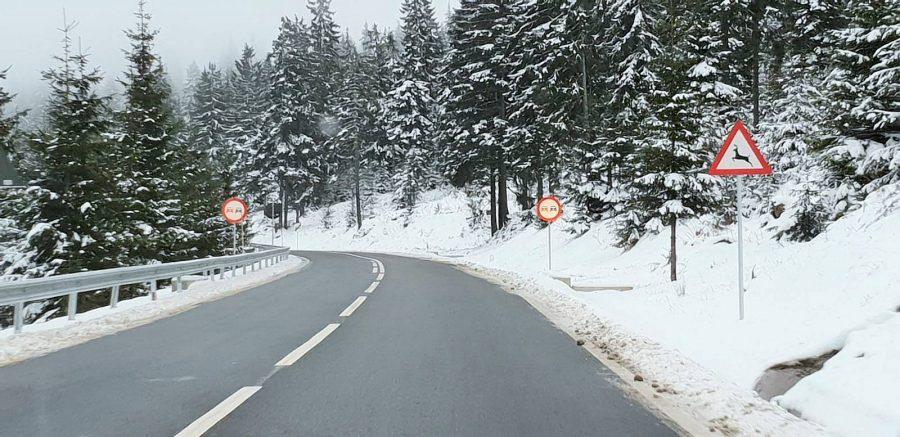 Cum va fi vremea in Maramures in intervalul 4 - 17 februarie