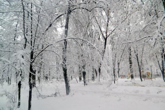 Veste rea de la ANM. Iarna aceasta ar putea fi cea mai grea din ultimii 30 sau chiar 100 de ani!