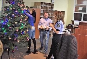 VIDEO – Baia Mare: Angajatii de la Inmatriculari tin la traditie. Acestia au impodobit pomul de Craciun, in birou