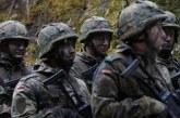 Germania: Bugetul militar pentru 2020 se va ridica la 50,25 miliarde de euro