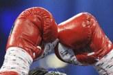 Meciul de box dintre britanicul Anthony Joshua şi bulgarul Kubrat Pulev, programat pentru data de 20 iunie