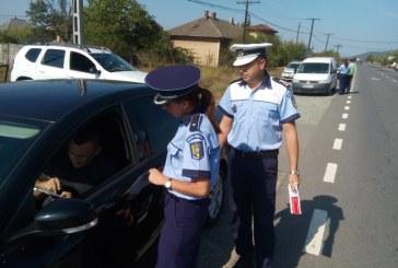 Politia Maramures, sondaj de opinie in randul soferilor. Ce au raspuns conducatorii auto