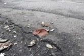 """(FOTO) Baia Mare: Trotuarele, din unele cartiere, sunt """"unse"""" cu excremente de caini. Trecatorii fac """"slalom"""" printre ele"""