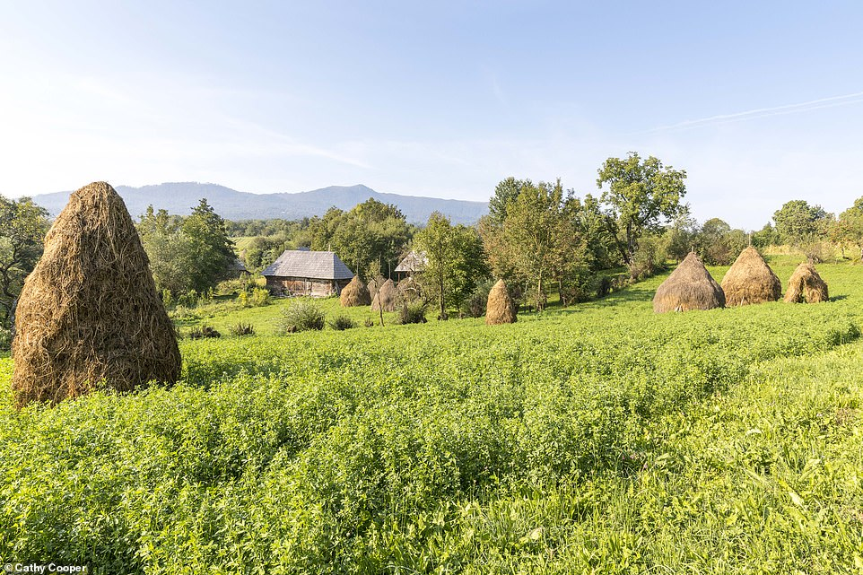 "Cum este vazut Maramuresul in presa britanica: ""O regiune frumoasa de paduri si dealuri pastrata intact"""
