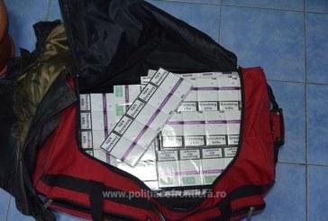 Peste 5.000 pachete cu tigari confiscate la frontiera de nord