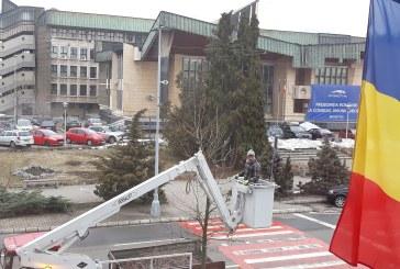 Imaginea zilei: Toaletare copaci de catre SPAU Baia Mare