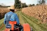 VIDEO – Ministrul Agriculturii: Avem 20 de milioane de euro pentru tineri fermieri, cetăţeni români din afara graniţelor ţării