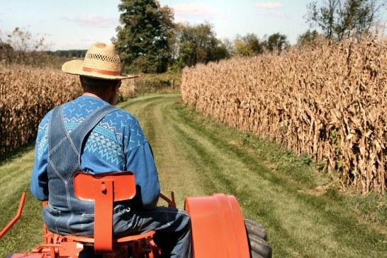 Agricultorii au un sprijin financiar de 580 milioane de lei, in 2019, care sa compenseze reducerea accizei la motorina