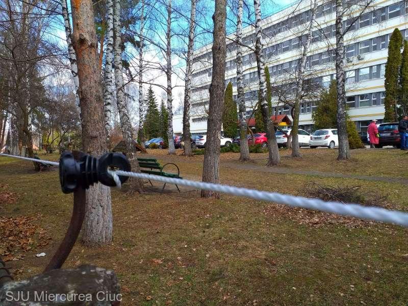 Harghita: Gard electric montat in jurul Spitalului de Urgenta Miercurea Ciuc pentru a tine la distanta ursii