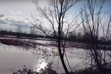 UPDATE: Inundatii in Maramures: Raul Lapus a iesit din matca (VIDEO)
