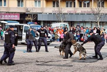 Baia Mare: Platoul din Piata Revolutiei, neincapator de Ziua Politiei (FOTO)
