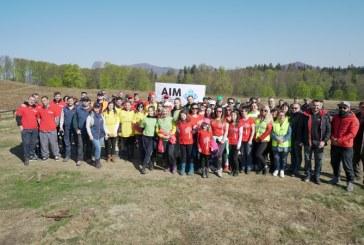 Actiune marca AIM: Aproximativ 600 de puieti de brad si molid plantati pe Pasunea Seituri (FOTO)