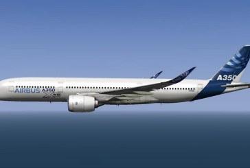 Germania: Guvernul va cumpara trei aeronave noi, dupa seria de incidente la avioanele sale actuale