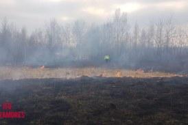 Maramureș: 24 de ore de foc. 10 incendii au fost de vegetație uscată și fond forestier