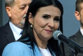 Sorina Pintea sustine infiintarea unei asociatii a spitalelor