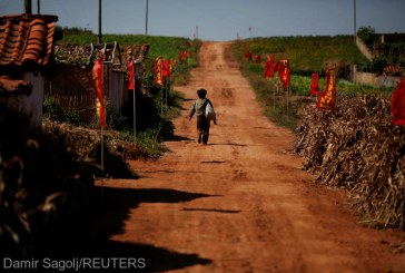 Raport ONU: In Coreea de Nord, mita este necesara pentru supravietuire