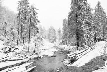 MAI RAR: Peisaj de iarna in luna mai, in Maramures (FOTO)