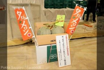 Japonia – Doi pepeni galbeni, vanduti la licitatie cu suma record de 40.800 de euro