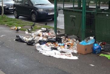 Fotografia zilei: Imagine dezolanta pe Bulevardul Republicii din Baia Mare