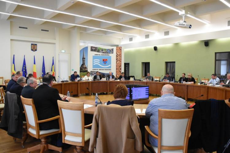Alesii judeteni au votat pentru finantarea nerambursabila a programelor, proiectelor si actiunilor culturale