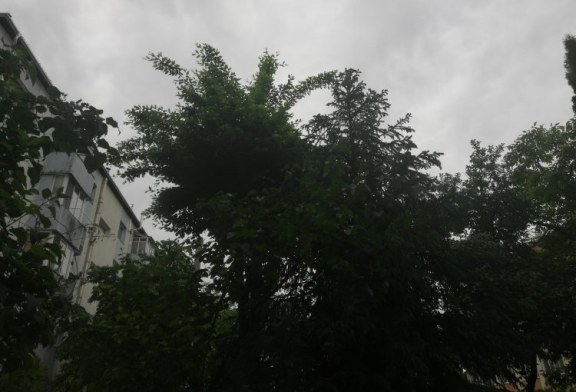 Vezi aici, cum va fi vremea astazi in Maramures