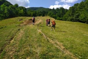 UPDATE: Salvamont Maramures, in cautarea unei persoane disparute in zona Crasna Viseului – Muntele Serban