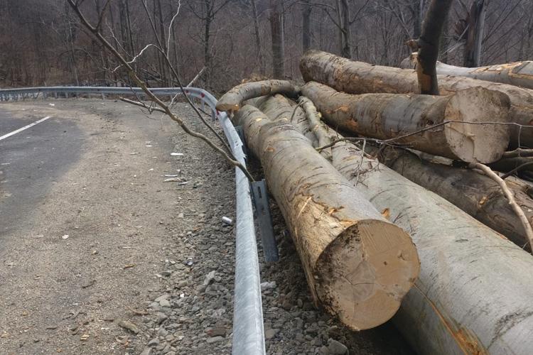 Peste 180 mc material lemnos confiscat de politistii maramureseni