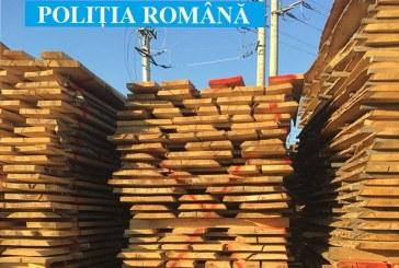 La Seini, politistii au confiscat 170 mc material lemnos