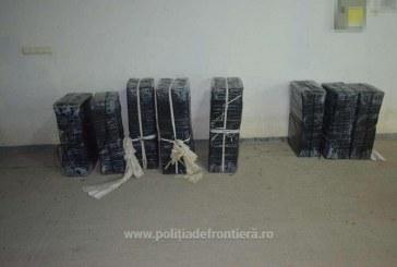 Tigari de contrabanda descoperite in apropierea localitatii Sarasau