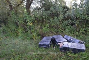 Tigari de contrabanda abandonate la Valea Viseului
