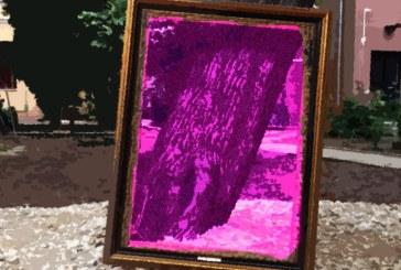 Muzeul Judetean de Arta Baia Mare lanseaza in luna august provocarea unui foto Safari Urban. Afla detalii