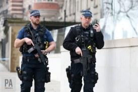 Un politist britanic, otravit in 2018 cu aceeasi substanta neurotoxica folosita in cazul Skripal