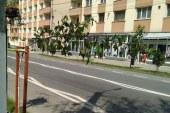 Baiesprianca surprinsa intr-o statie de autobuz in timp ce vindea tigari de contrabanda