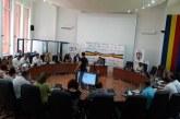 """Proiectul """"Castane 2019"""" a fost respins astazi in sedinta de Consiliu Local. Vezi aici, ce s-a intamplat"""