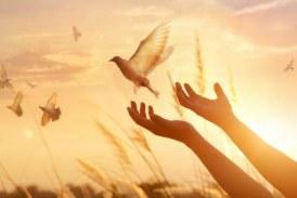 Adormirea Maicii Domnului, traditii si obiceiuri. Ce nu trebuie sa faci de Sfanta Maria Mare
