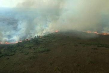 Brazilia respinge ajutorul propus de G7 pentru combaterea incendiilor din Amazonia