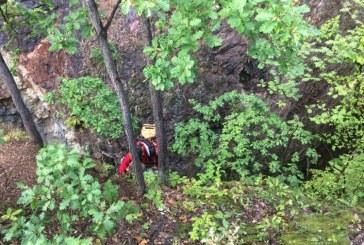 Un tanar a cazut in gol, aproximativ 45 m. Incidentul s-a petrecut in fisura Zorilor de pe Dealul Minei, deasupra Lacului Albastru, din Baia Sprie