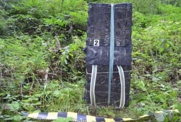 Tigari in valoare de peste 47.000 lei confiscate la frontiera de nord