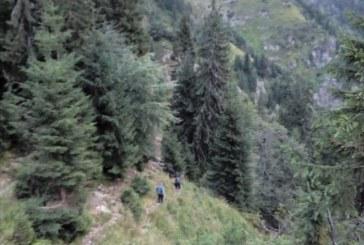 Cadavrul ciobanului disparut in iunie a fost gasit pe Vf. Serban, Bistra