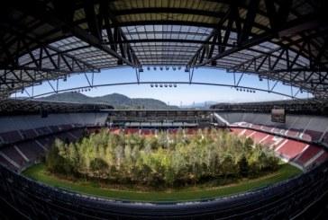 Un proiect artistic din Austria a inlocuit gazonul unui stadion cu o padure alcatuita din 300 de copaci