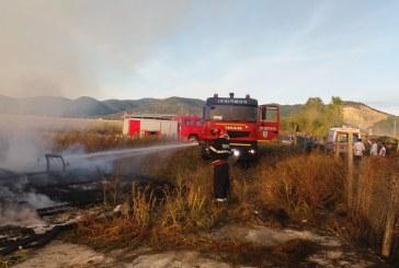 Seini: Incendiu la mai multe adaposturi de animale (FOTO)