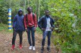 Tineri din Coasta de Fildes si Guineea surprinsi in timp ce intrau fraudulos in Romania pe la frontiera cu Ucraina
