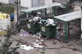 BAIA MARE – Amenzi aplicate celor care împrăștie gunoaiele din containere sau rup florile
