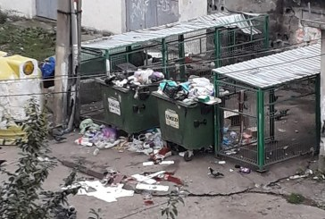 BAIA MARE – Abandonarea deșeurilor la voia întâmplării a devenit o modă