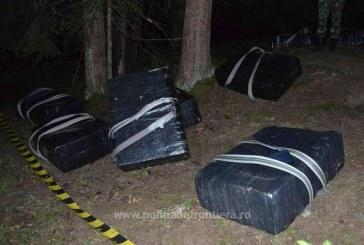 S-au facut nevazuti in padure insa au ramas fara marfa de contrabanda