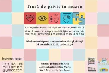 """La Muzeul Judetean de Arta Baia Mare se lanseaza """"Trusa de privit in muzeu"""""""