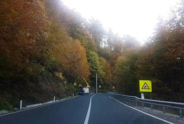 Actiune de taiere a arborilor marcati care pot pune in pericol desfasurarea circulatiei rutiere in Pasul Gutai